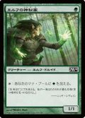 $FOIL$(M14-CG)Elvish Mystic/エルフの神秘家(日,JP)