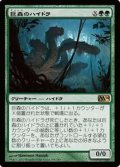 (M14-RG)Vastwood Hydra/巨森のハイドラ(英,EN)