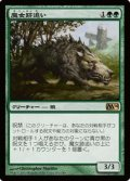 $FOIL$(M14-RG)Witchstalker/魔女跡追い(日,JP)