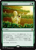 (AKH-RG)Harvest Season/収穫期(英,EN)