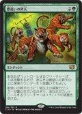 (C14-RG)Beastmaster Ascension/獣使いの昇天(英,EN)