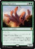 (C16-MG)Kalonian Hydra/カロニアのハイドラ(日,JP)
