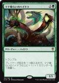 (C16-RG)Managorger Hydra/マナ喰らいのハイドラ(英,EN)