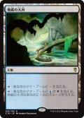 (C16-RL)Underground River/地底の大河(日,JP)