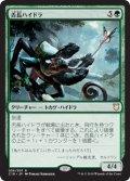 (C18-RG)Whiptongue Hydra/舌長ハイドラ(日,JP)