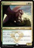 $FOIL$(DTK-MM)Dragonlord Dromoka/龍王ドロモカ(JP)