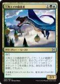 (EMA-UM)Trygon Predator/三角エイの捕食者(JP,EN)