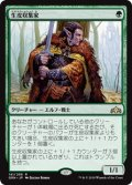 (GRN-RG)Pelt Collector/生皮収集家(日,JP)