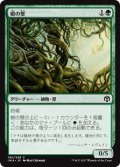 【Foil】(IMA-CG)Wall of Roots/根の壁(日,JP)