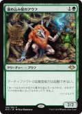 【Foil】(MH1-RG)Collector Ouphe/溜め込み屋のアウフ(JP)