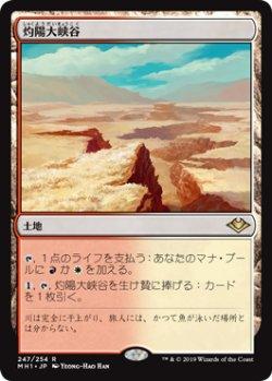 画像1: 【Foil】(MH1-RL)Sunbaked Canyon/灼陽大峡谷(英,EN)