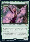 (MH2-RG)Sanctum Weaver/聖域の織り手(日,JP)