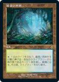 【エッチング仕様】【旧枠】(MH2-RL)Misty Rainforest/霧深い雨林(日,JP)