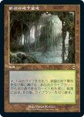 【エッチング仕様】【旧枠】(MH2-RL)Verdant Catacombs/新緑の地下墓地(日,JP)