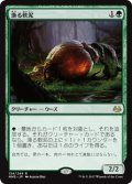 (MM3-RG)Scavenging Ooze/漁る軟泥(JP,EN)