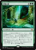 (MM3-RG)Summoning Trap/召喚の罠(JP,EN)