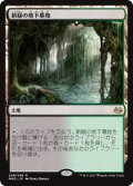 (MM3-RL)Verdant Catacombs/新緑の地下墓地(JP,EN)