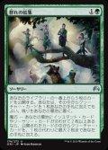 $FOIL$(ORI-UG)Gather the Pack/群れの結集(日,JP)
