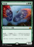 (RIX-MG)Polyraptor/万猛竜(日,JP)