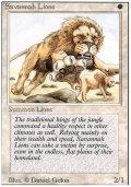 【黒枠FBB】(3ED-R)Savannah Lions/サバンナ・ライオン(伊,Ita,独,ger,仏,Fra)