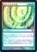 【Foil】(SOK-RG)Endless Swarm/終わりなき大群(日,JP)