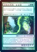【Foil】(SOK-RG)Sasaya, Orochi Ascendant/上位の大蛇、ささ弥(日,JP)