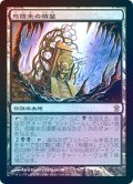 【Foil】(SOK-RL)Tomb of Urami/烏羅未の墳墓(日,JP)