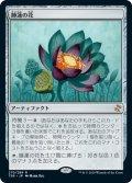 (TSR-RA)Lotus Bloom/睡蓮の花(日,JP)