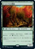 (TSR-RG)Dryad Arbor/ドライアドの東屋(日,JP)