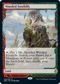 【Foil】(ZNE-ML)Wooded Foothills/樹木茂る山麓(英,EN)