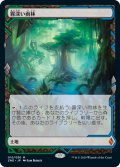 【Foil】(ZNE-ML)Misty Rainforest/霧深い雨林(日,JP)