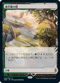【Foil】(ZNE-ML)Horizon Canopy/地平線の梢(日,JP)