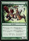(ALA-C)Wild Nacatl/野生のナカティル(JP)