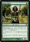 $FOIL$(CON-R)Noble Hierarch/貴族の教主(日,JP)