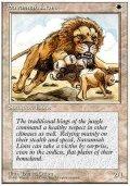 (4ED-R)Savannah Lions/サバンナ・ライオン(JP,ENG)