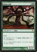 (ISD-M)Tree of Redemption/解放の樹(英,EN)