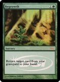 (Promo-Judge)Regrowth