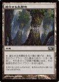 (M13-C)Evolving Wilds/進化する未開地(JP,ENG)