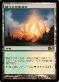 (M13-R)Sunpetal Grove/陽花弁の木立ち(日,JP)