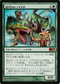 (M10-M)Protean Hydra/変幻のハイドラ(ENG)