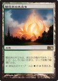 (M12-R)Sunpetal Grove/陽花弁の木立ち(日,JP)