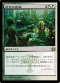 $FOIL$(RTR-R)Growing Ranks/兵士の育成(JP)