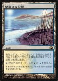 (SOM-R)Seachrome Coast/金属海の沿岸(英,EN)