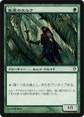 (WWK-C)Arbor Elf/東屋のエルフ(JP,EN)