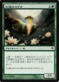 $FOIL$(ZEN-M)Lotus Cobra/水蓮のコブラ(JP)