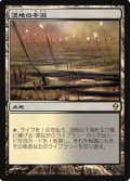 $FOIL$(ZEN-R)Marsh Flats/湿地の干潟(JP)