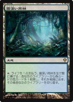 画像1: (ZEN-R)Misty Rainforest/霧深い雨林(JP)