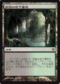 $FOIL$(ZEN-R)Verdant Catacombs/新緑の地下墓地(JP)